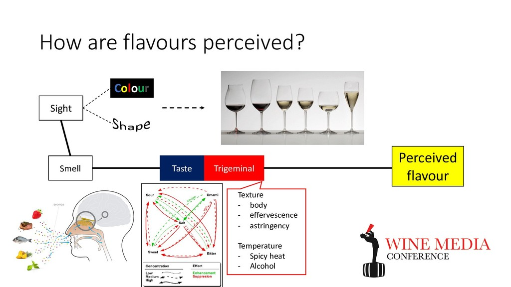 How are flavours perceived? Smell Taste Trigemi...
