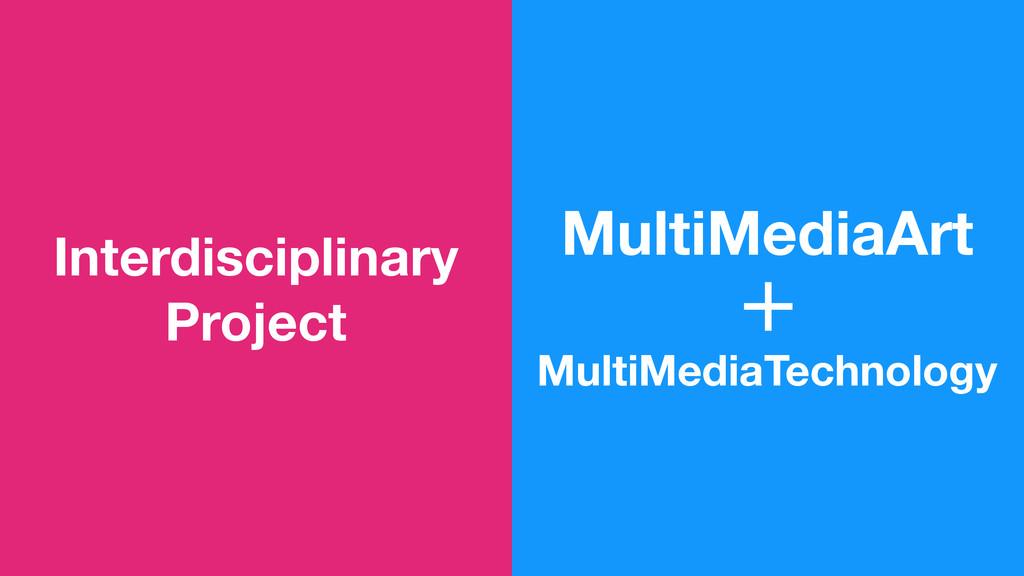 Interdisciplinary Project MultiMediaArt MultiMe...