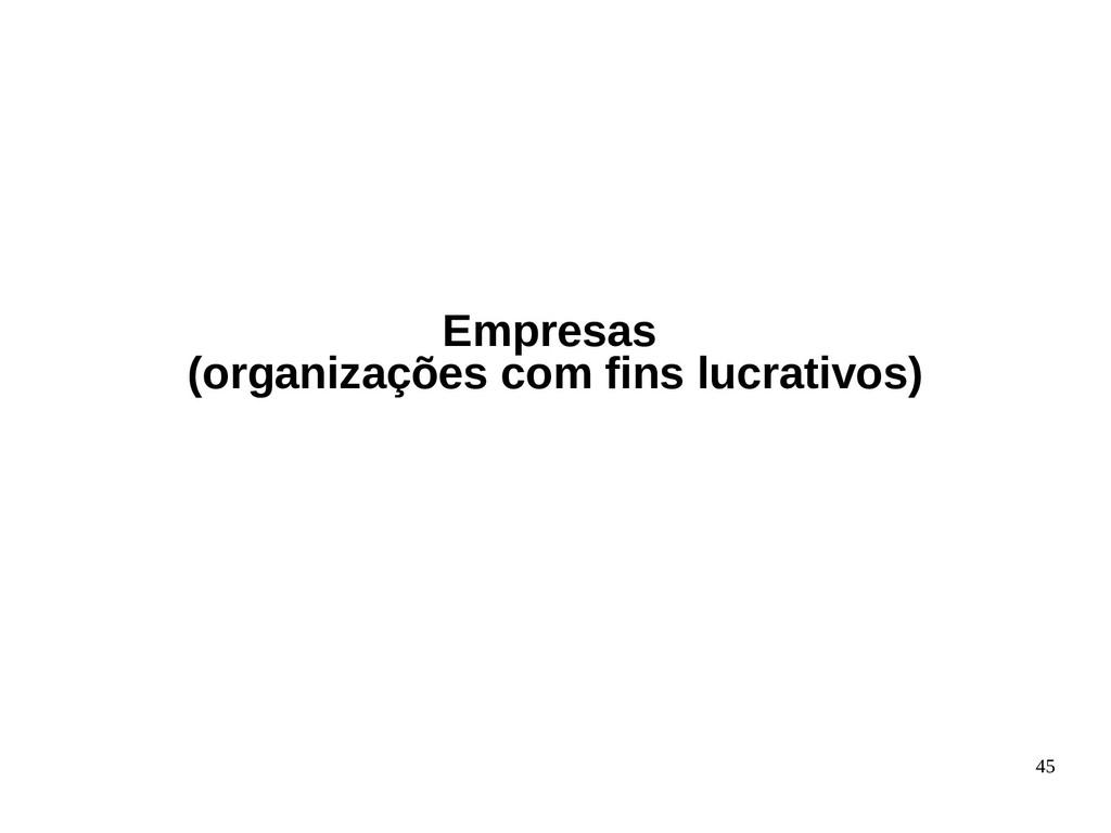 45 Empresas (organizações com fins lucrativos)