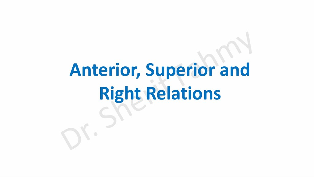 Anterior, Superior and Right Relations