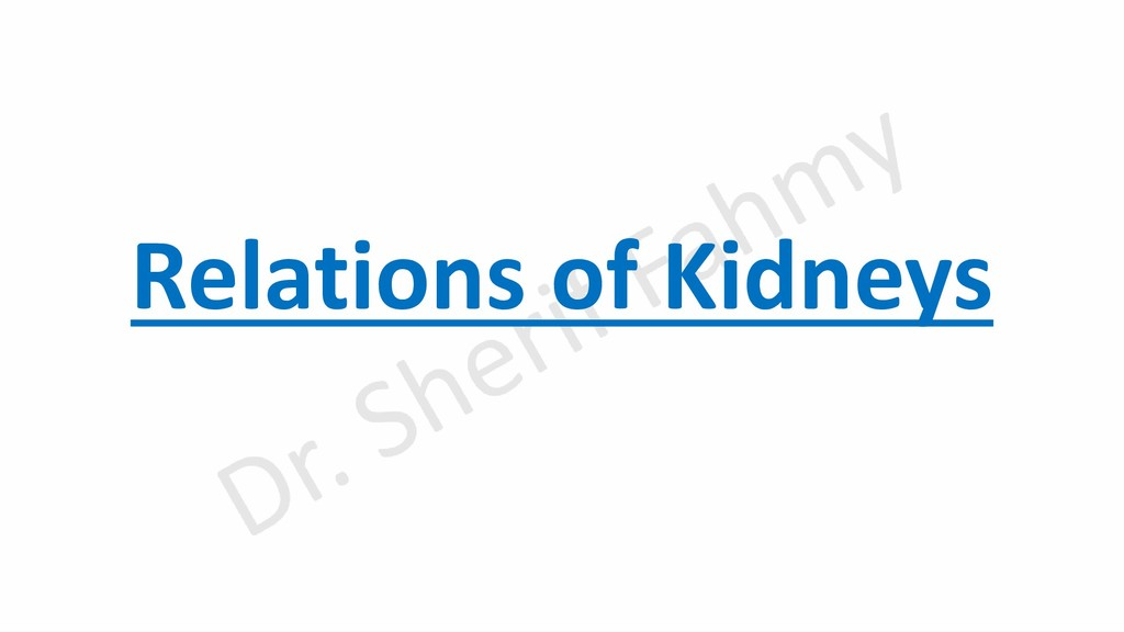 Relations of Kidneys