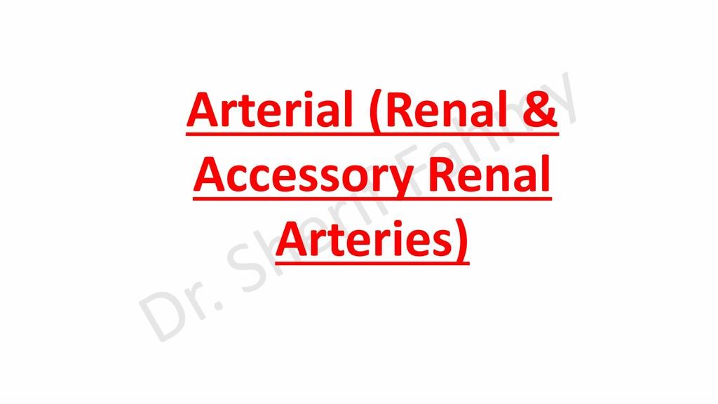 Arterial (Renal & Accessory Renal Arteries)