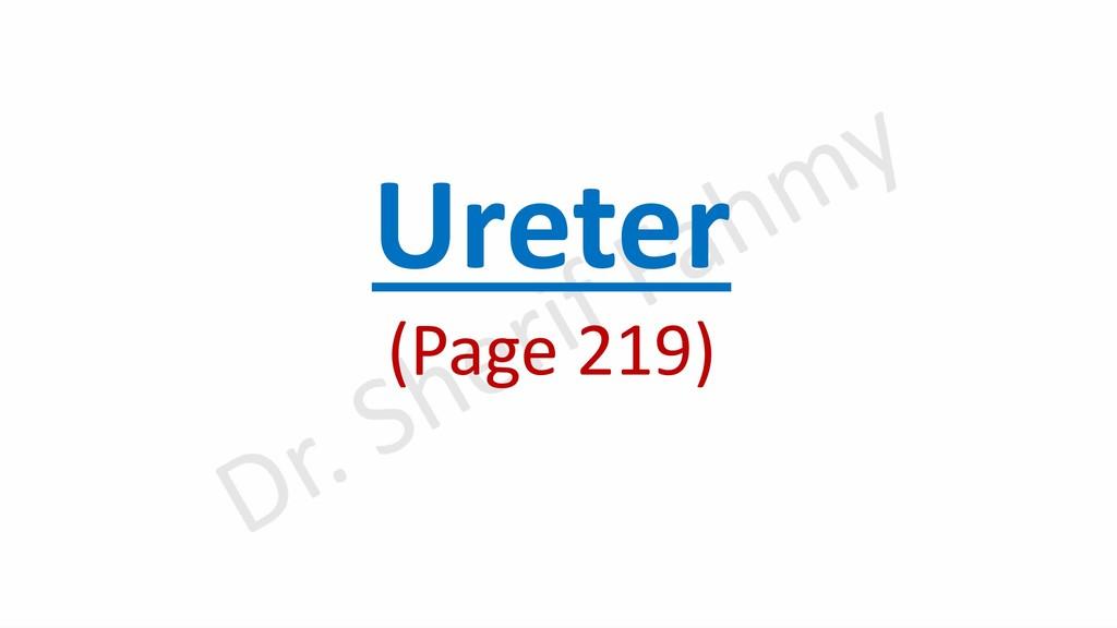 Ureter (Page 219)