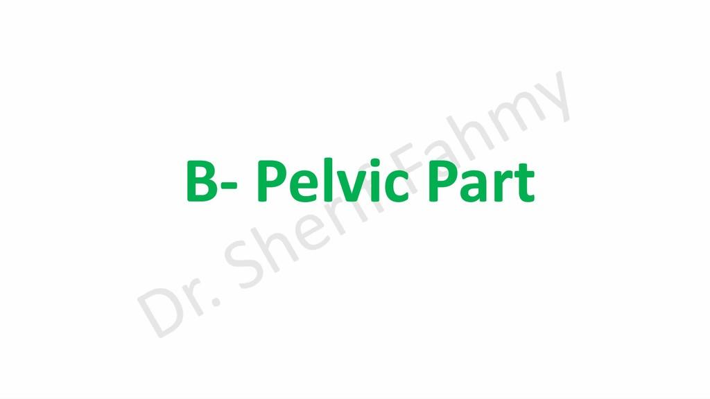 B- Pelvic Part