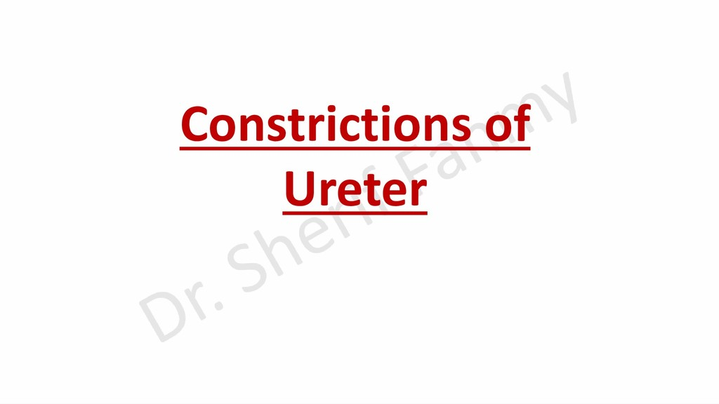 Constrictions of Ureter