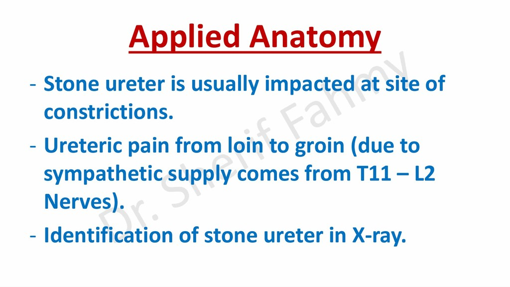 Applied Anatomy - Stone ureter is usually impac...