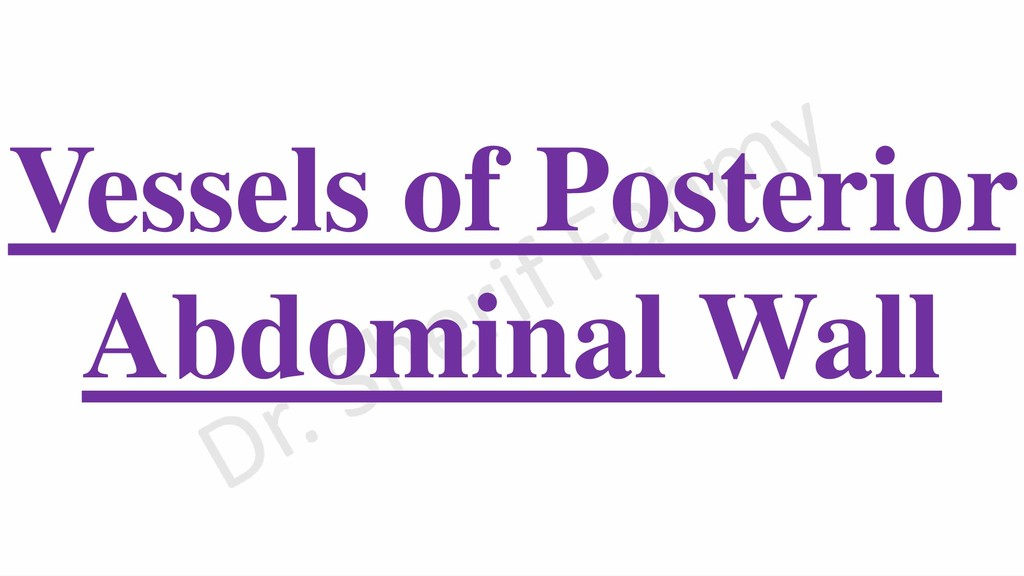 Vessels of Posterior Abdominal Wall