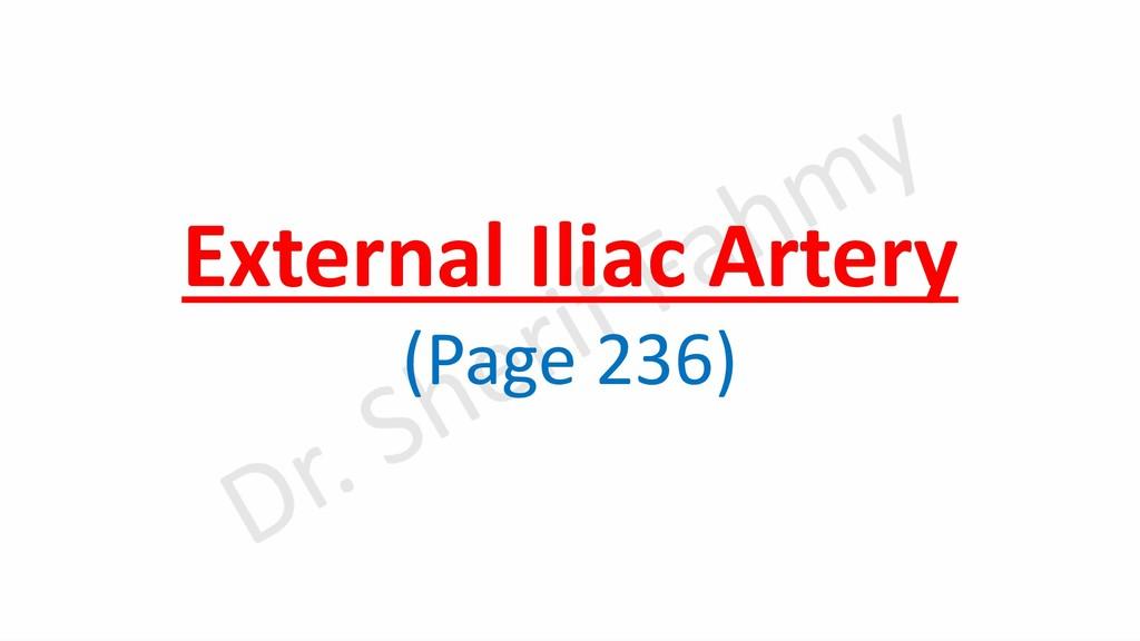 External Iliac Artery (Page 236)