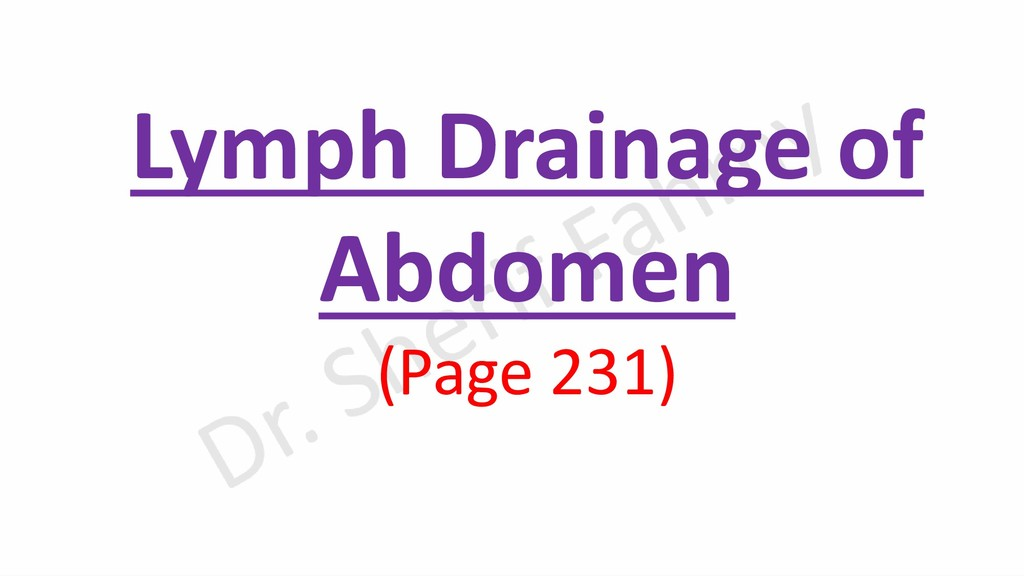 Lymph Drainage of Abdomen (Page 231)