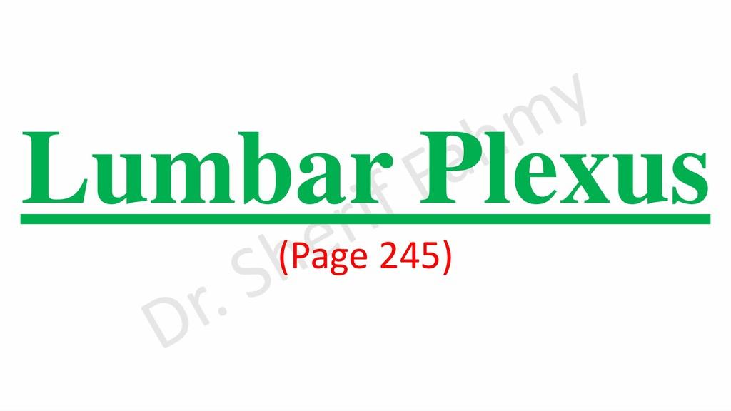 Lumbar Plexus (Page 245)