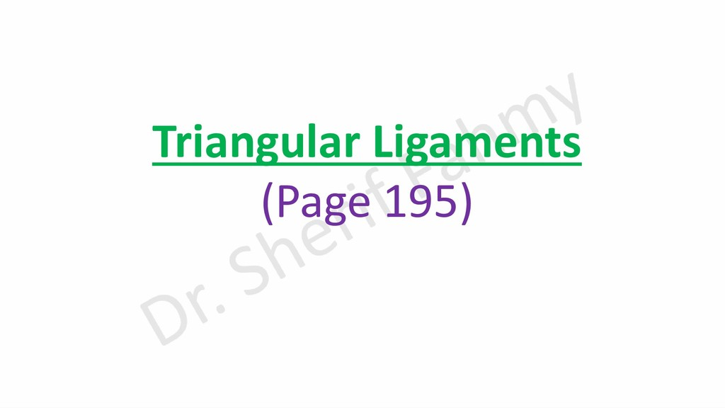 Triangular Ligaments (Page 195)