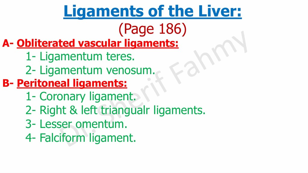 Ligaments of the Liver: (Page 186) A- Obliterat...
