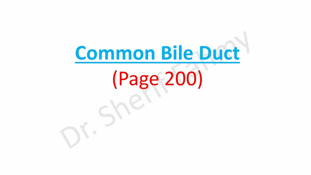 Common Bile Duct (Page 200)