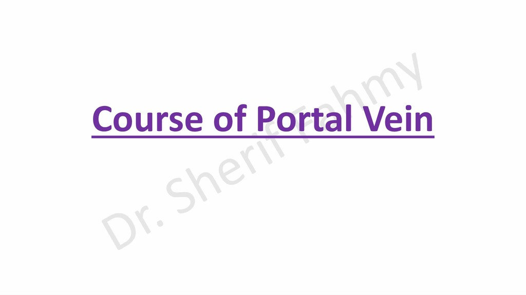 Course of Portal Vein