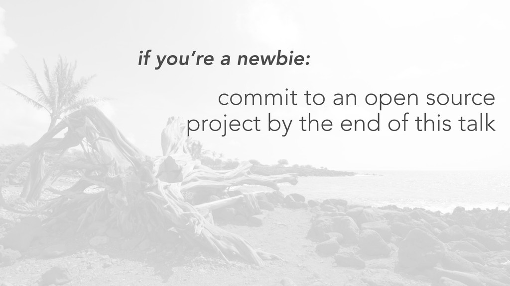 if you're a newbie: commit to an open source pr...