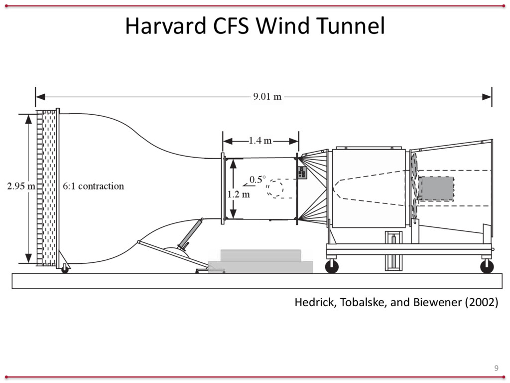 Harvard	
