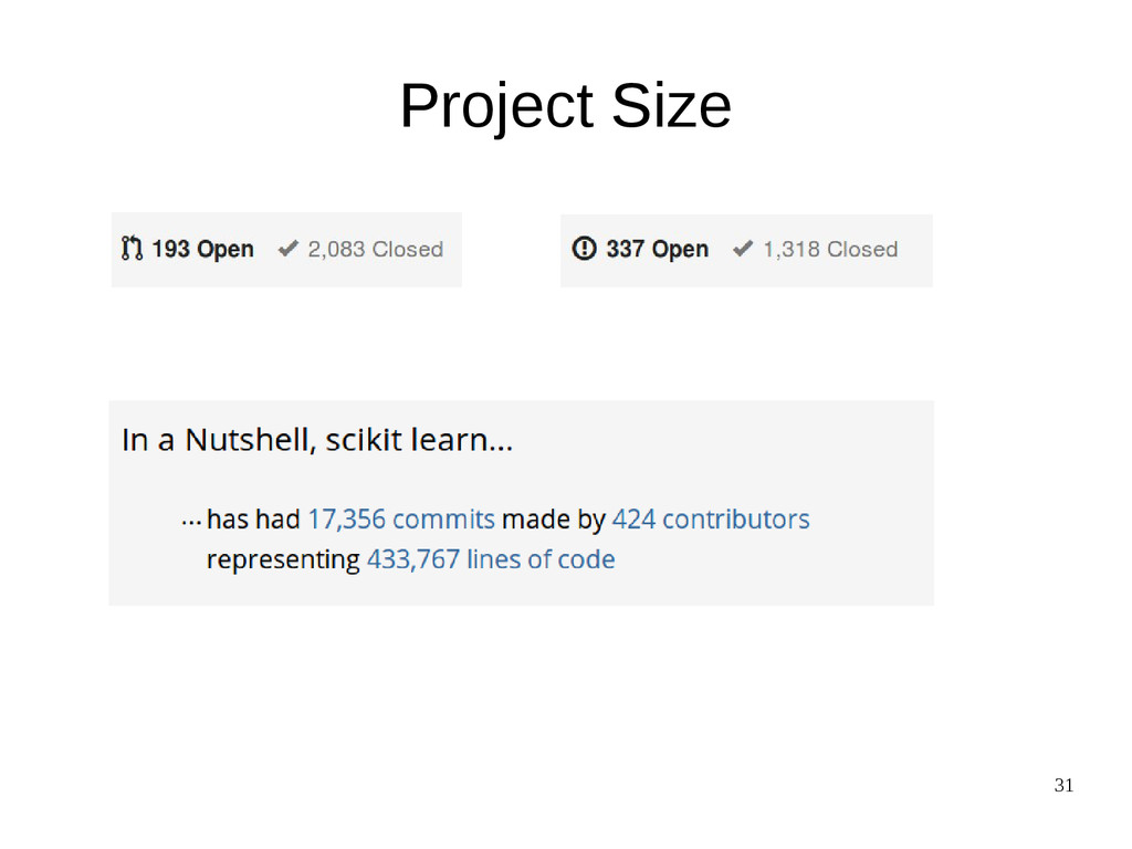 31 Project Size