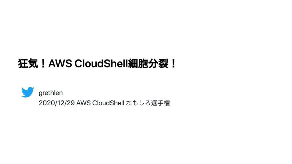 狂気!AWS CloudShell細胞分裂! grethlen 2020/12/29 AWS ...