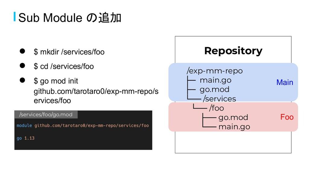 Main Foo Repository /exp-mm-repo ├─ main.go ├─ ...