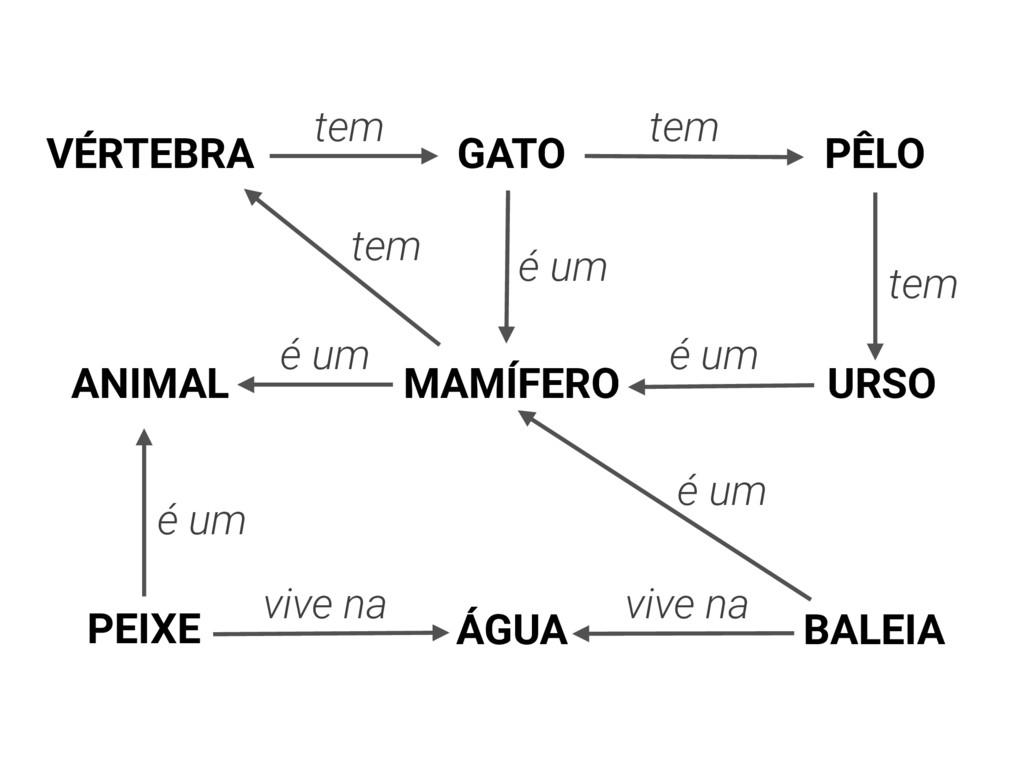 MAMÍFERO é um é um tem PÊLO URSO tem BALEIA é u...