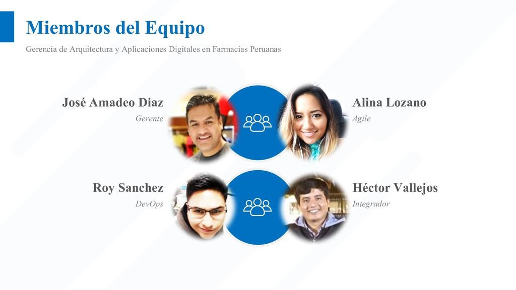 Miembros del Equipo Gerencia de Arquitectura y ...
