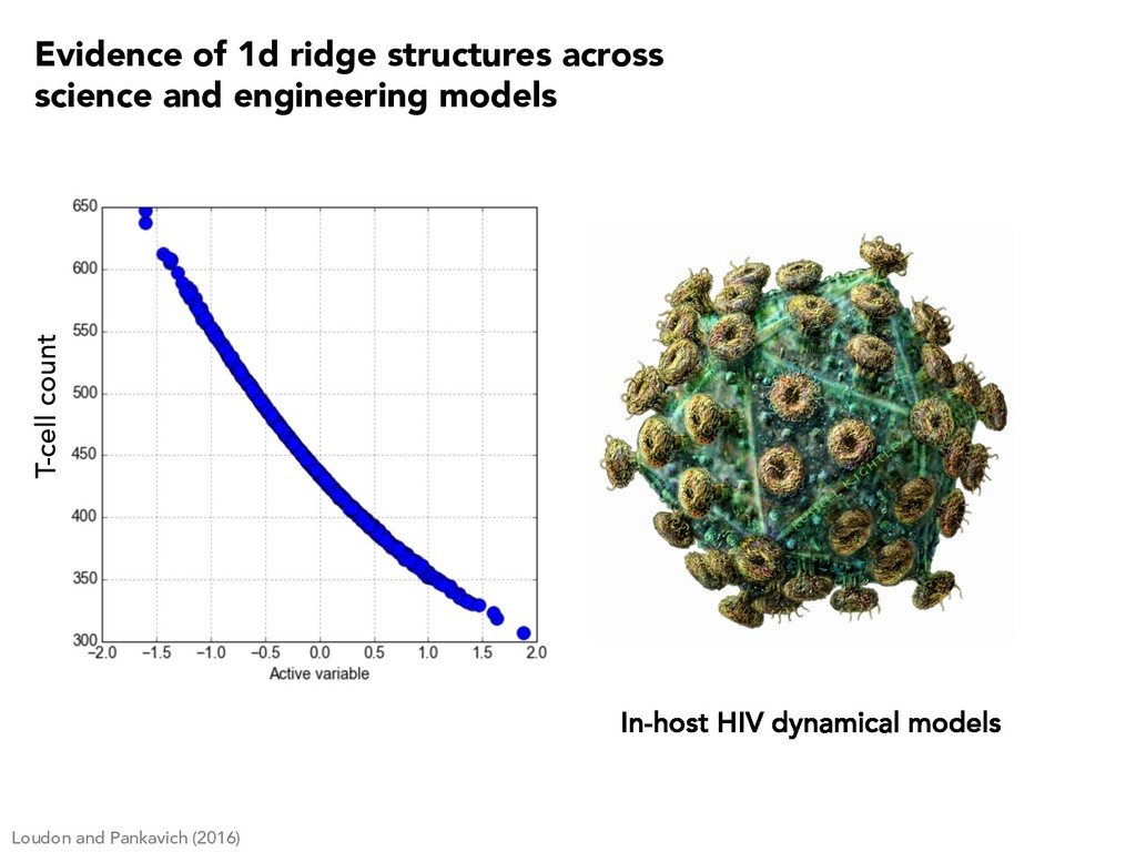 In-host HIV dynamical models T-cell count Loudo...