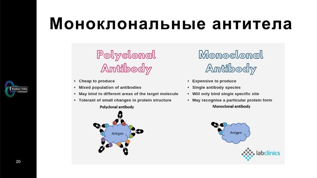 20 Моноклональные антитела