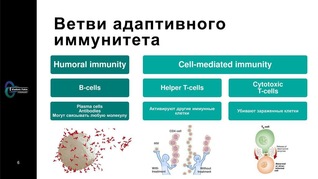 6 Ветви адаптивного иммунитета Humoral immunity...