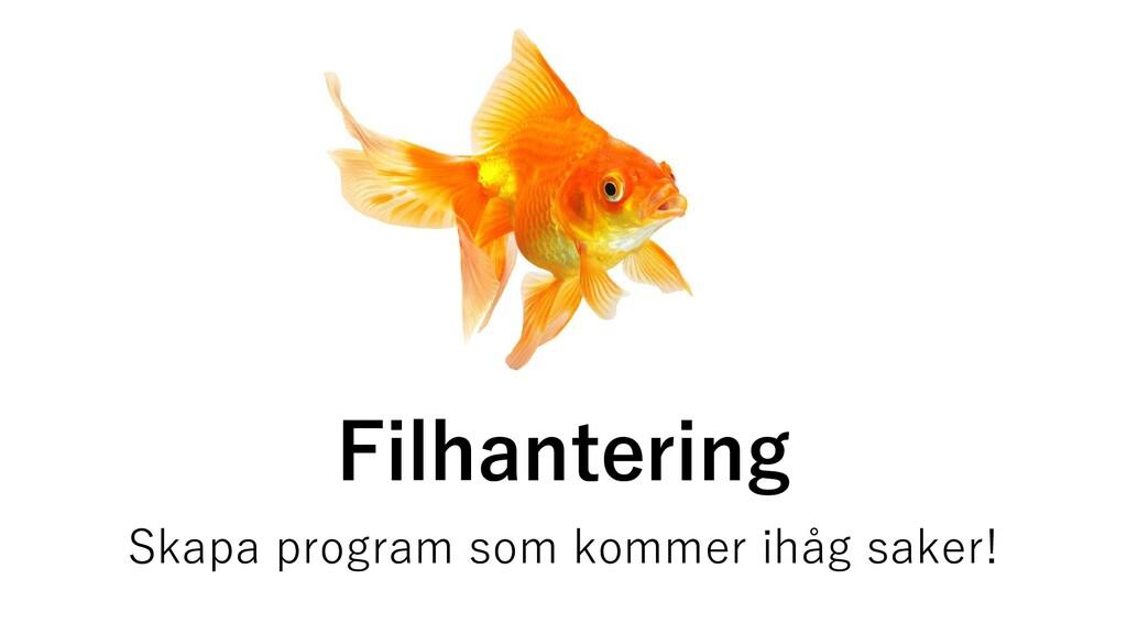 Filhantering Skapa program som kommer ihåg sake...