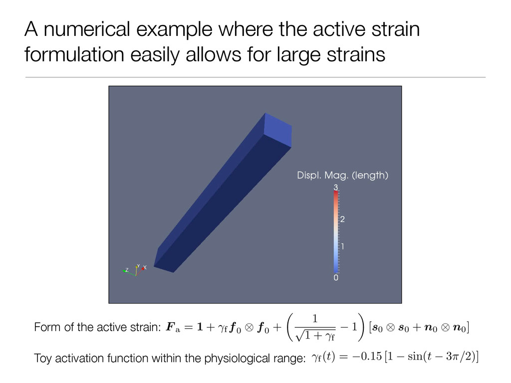 A numerical example where the active strain for...