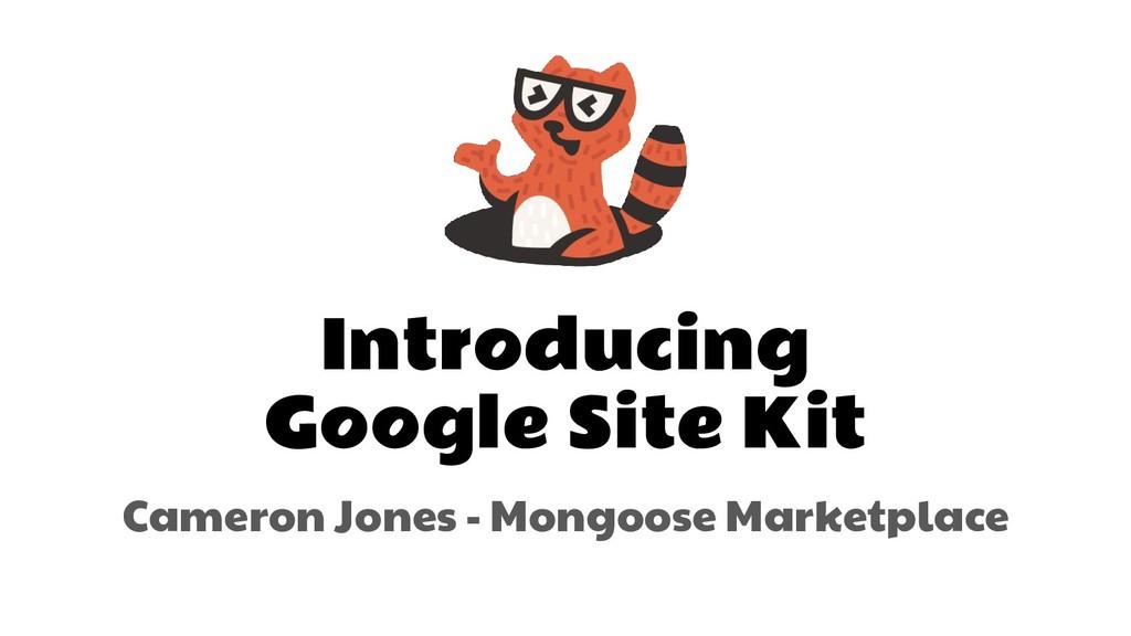 Introducing Google Site Kit Cameron Jones - Mon...