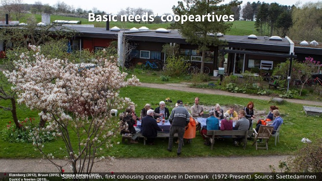 Basic needs' coopeartives Basic needs' coopeart...