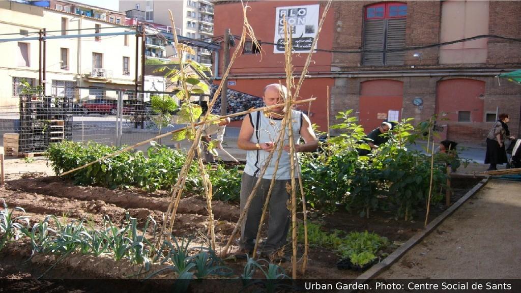 Urban Garden. Photo: Centre Social de Sants