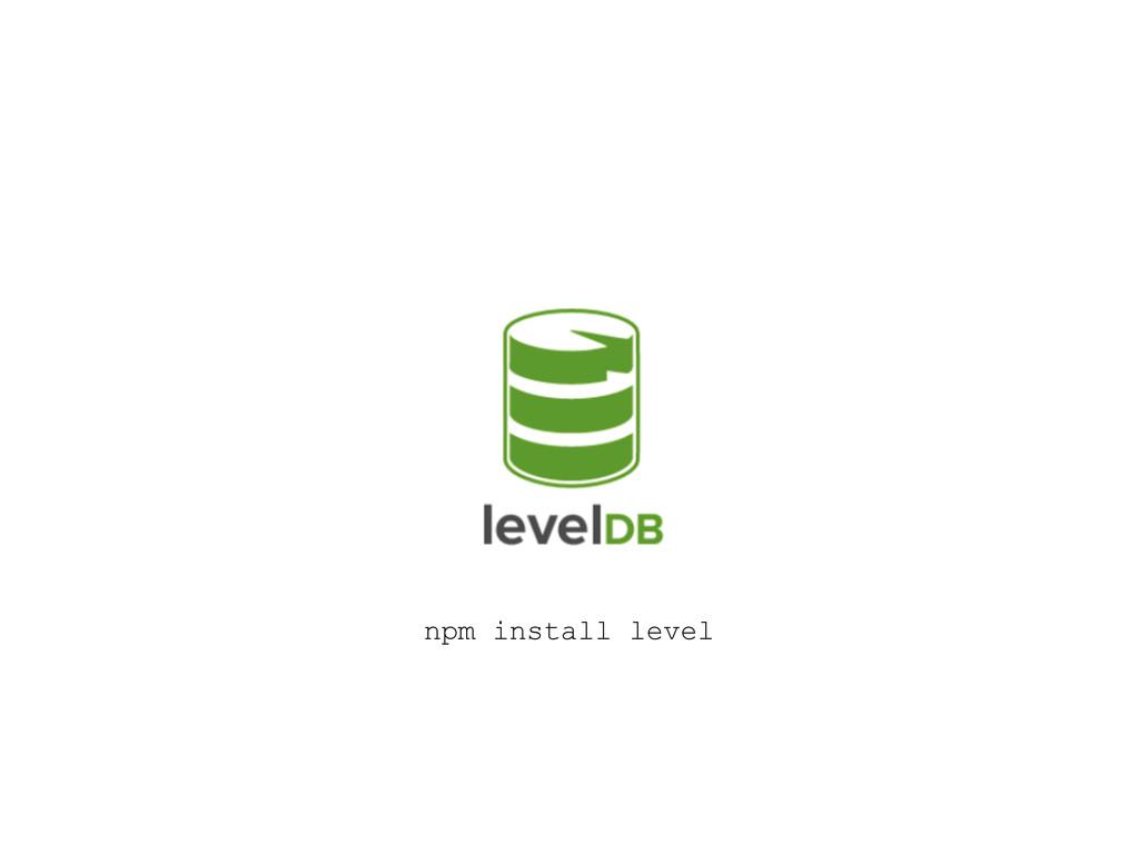 npm install level