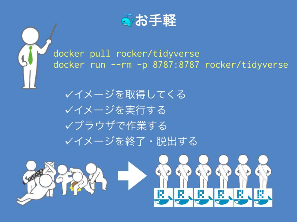 #͓खܰ docker pull rocker/tidyverse docker run --...