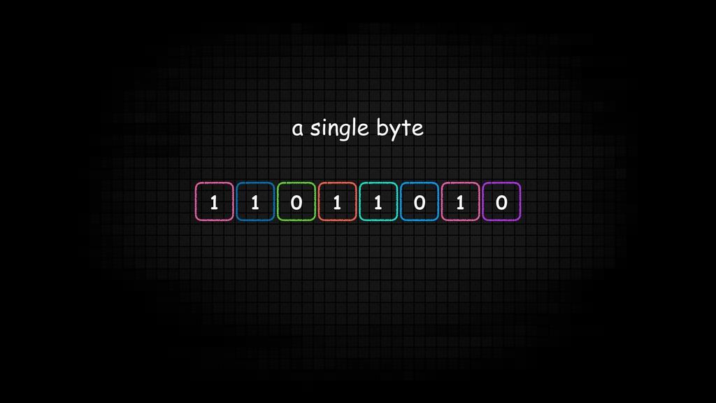 a single byte 1 1 0 1 1 0 1 0