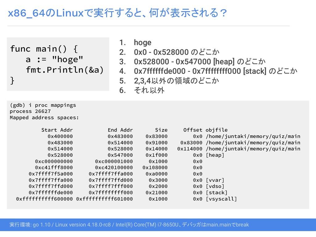 x86_64のLinuxで実行すると、何が表示される? 実行環境: go 1.10 / Lin...