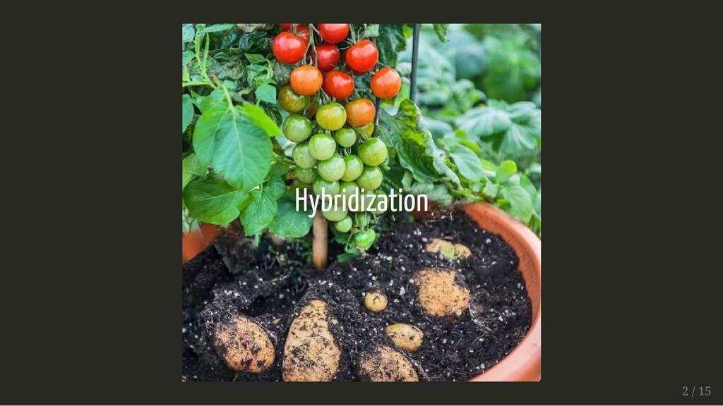 Hybridization Hybridization 2 / 15 2 / 15
