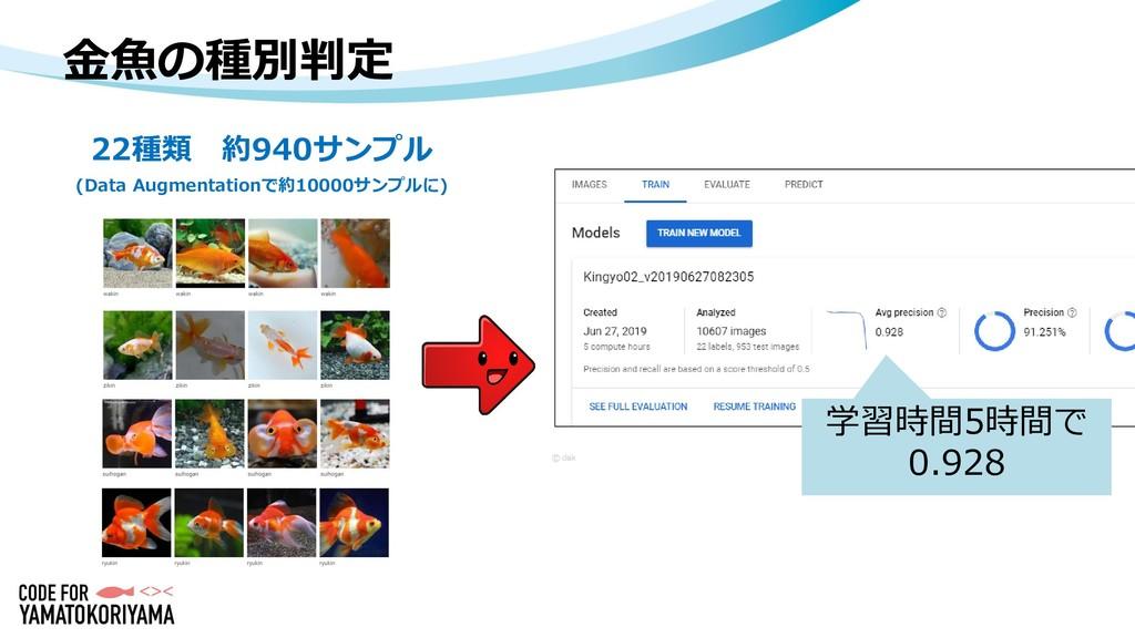 金魚の種別判定 22種類 約940サンプル (Data Augmentationで約10000...