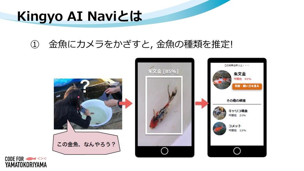 Kingyo AI Naviとは ① 金魚にカメラをかざすと, 金魚の種類を推定!