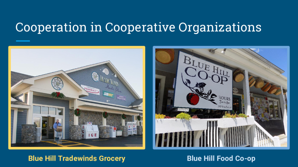 Cooperation in Cooperative Organizations Blue H...