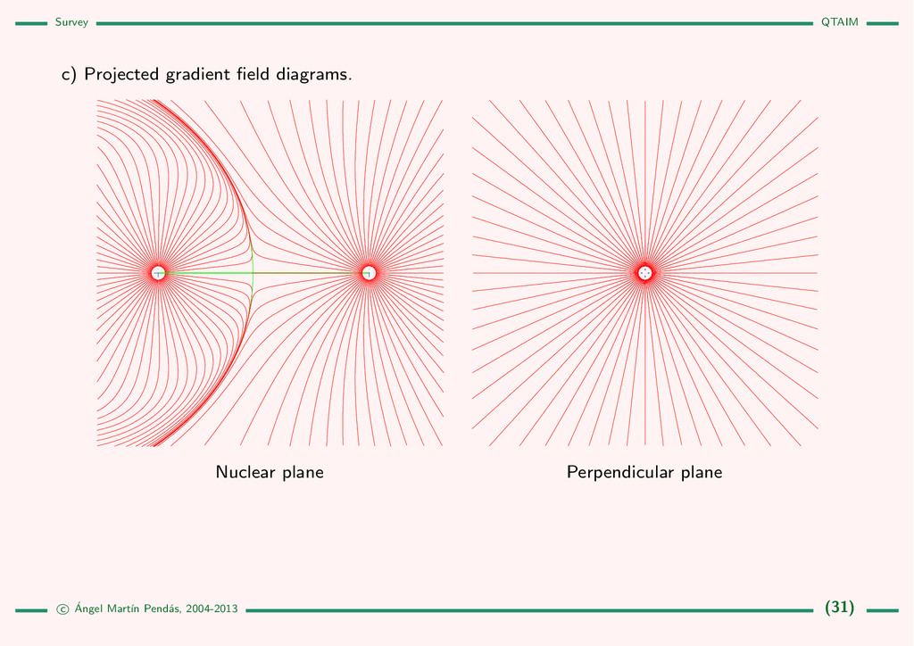 Survey QTAIM c) Projected gradient field diagram...