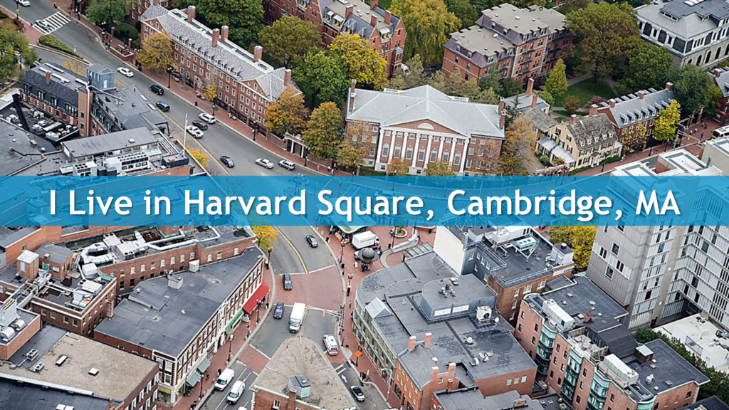 I Live in Harvard Square, Cambridge, MA