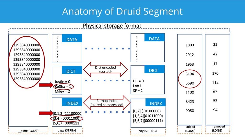 Anatomy of Druid Segment 112 67 53 94 5690 1100...