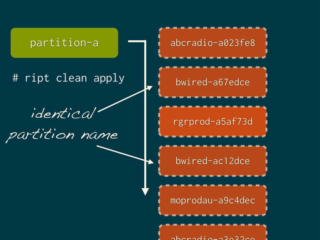 identical partition name # ript clean apply par...