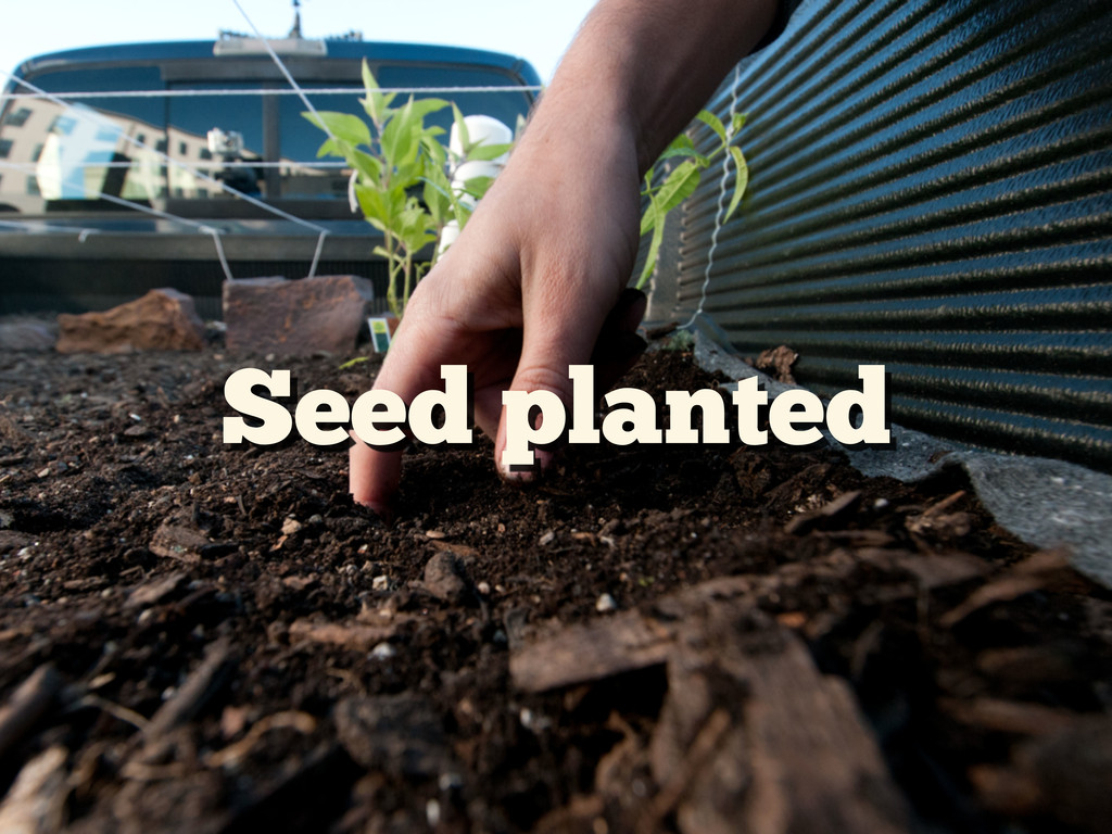 Seed planted