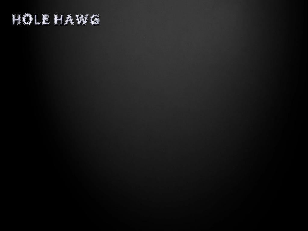 HOLE HAWG HOLE HAWG