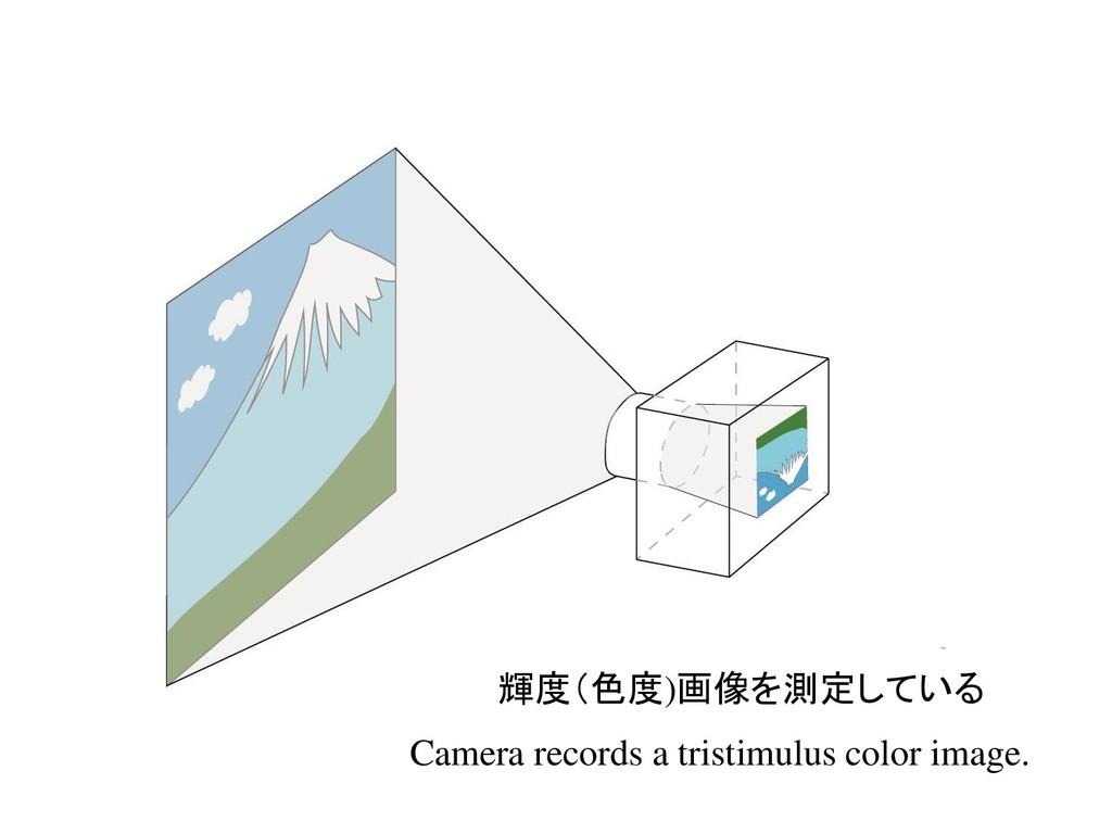 輝度(色度)画像を測定している Camera records a tristimulus co...