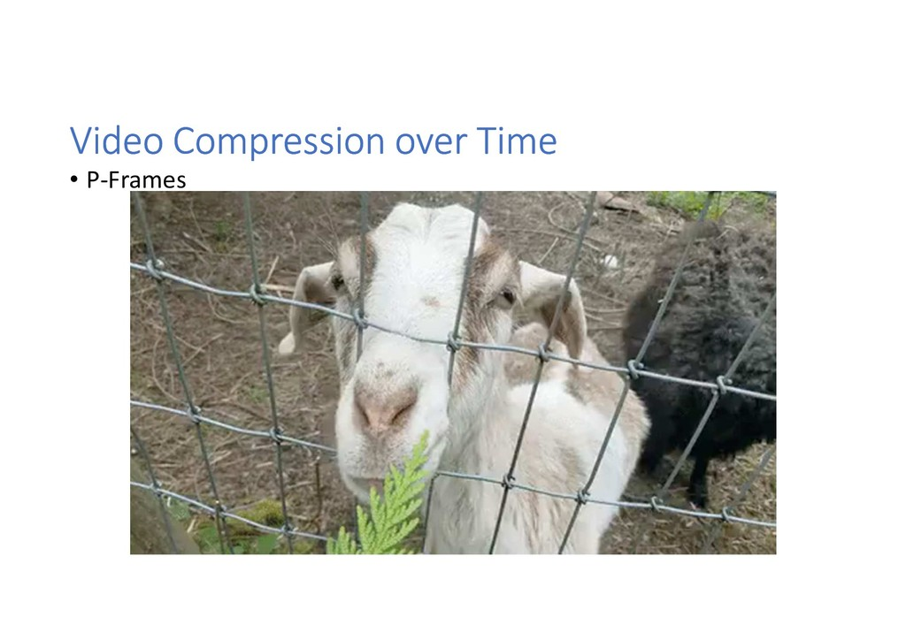 Video Compression over Time • P-Frames