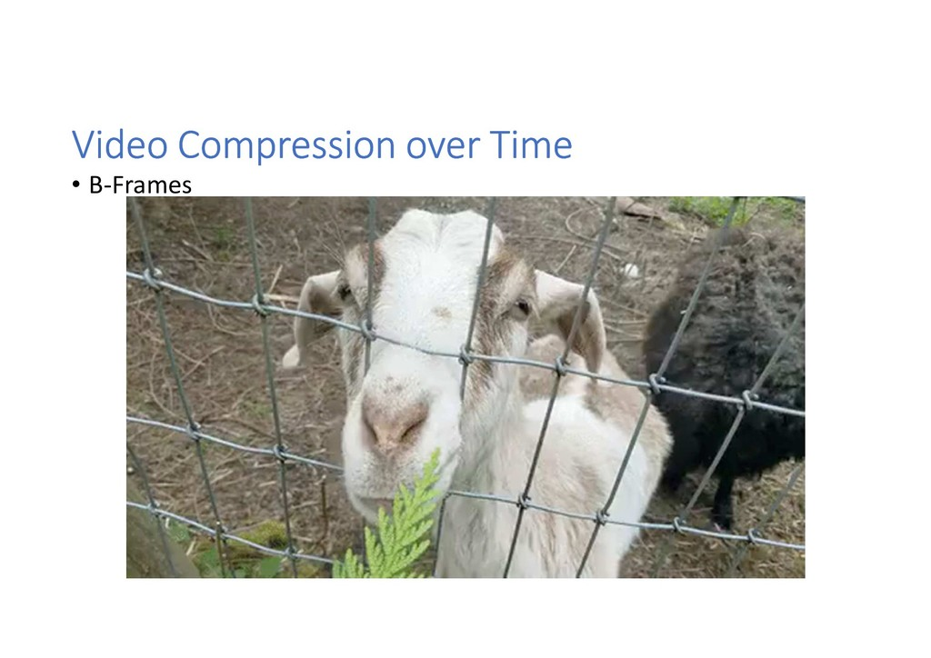 Video Compression over Time • B-Frames
